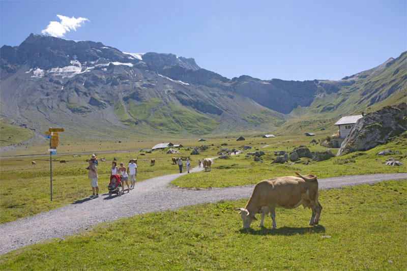 Adelboden countryside