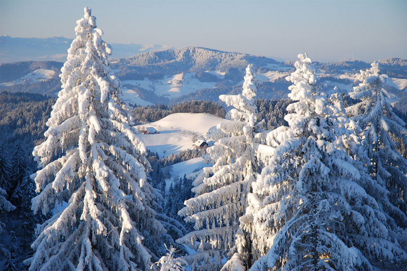 Winter scenery in Emmental