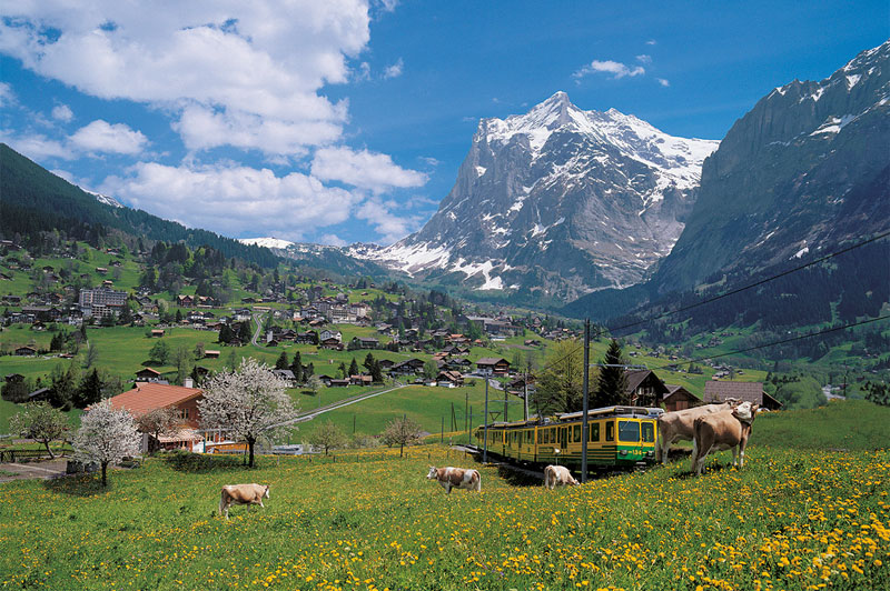 View of Grindelwald and the Eiger