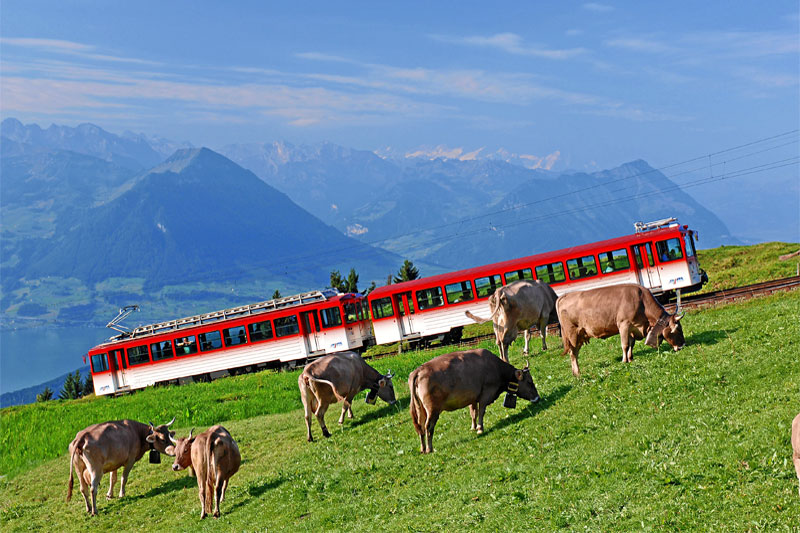 Train from Vitznau to Rigi