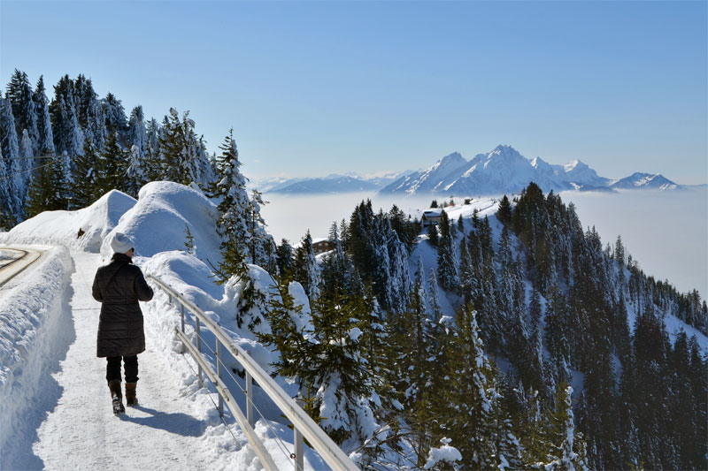 Winter walking on Mount Rigi