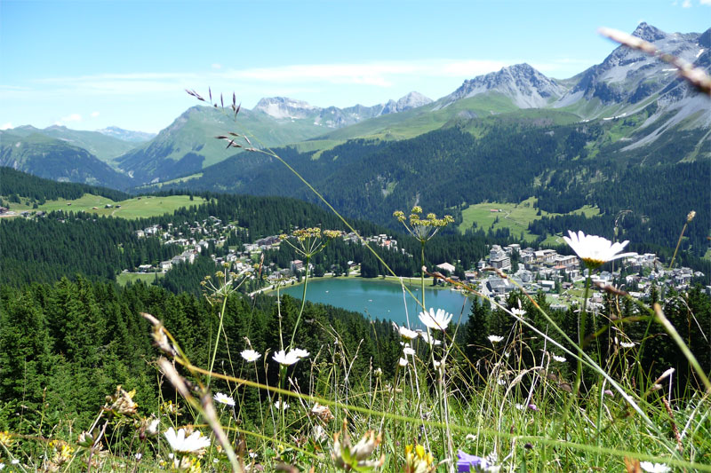 View over the Obersee, Arosa