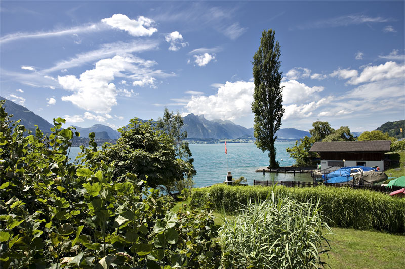 Merligen on Lake Thun